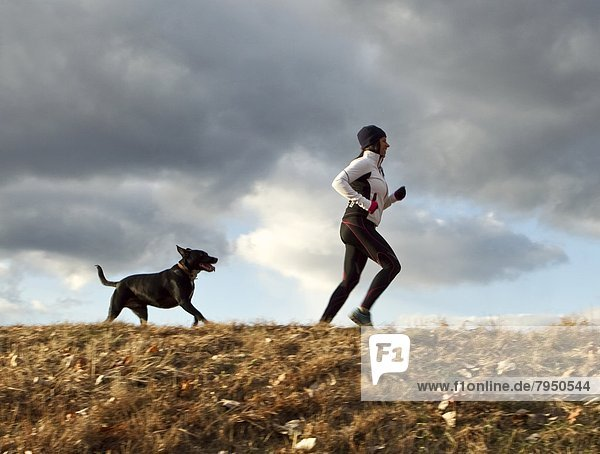 folgen  Hund  joggen  Läufer  vorwärts