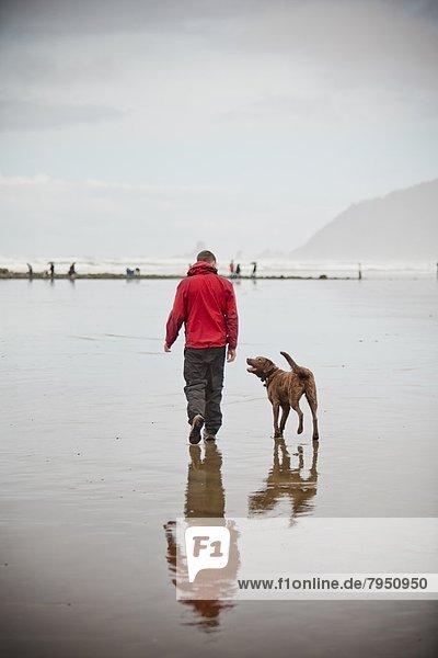Mann  gehen  Strand  Hund