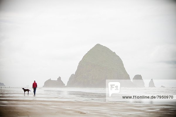 nahe  Felsbrocken  Mann  gehen  Strand  Hund  groß  großes  großer  große  großen  vorwärts
