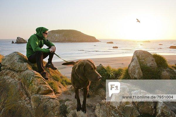 Felsen  Strand  Sonnenuntergang  Hund  Inhaber  Sonnenaufgang  Schiffswache