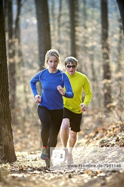 folgen  rennen  Wald  Läufer  2