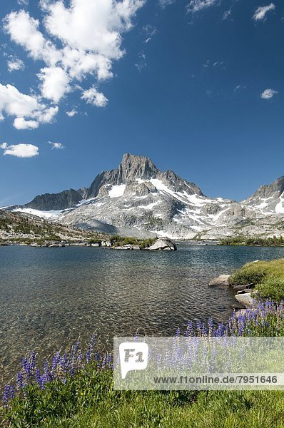 Blume  See  Insel  Reklameschild  unterhalb  Kalifornien