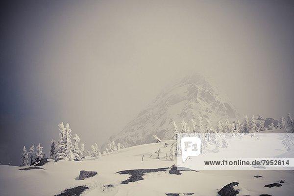 Winter  Anstieg
