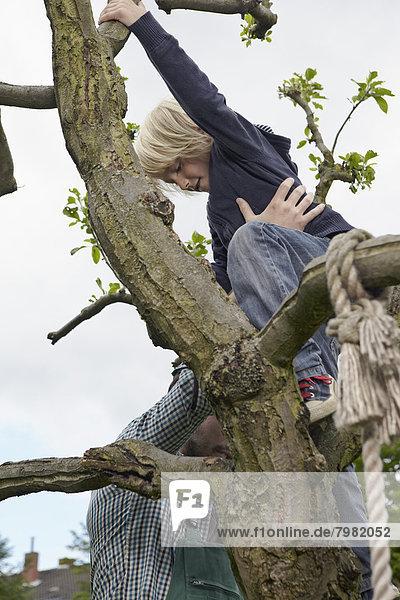 Deutschland  Köln  Vater hilft Sohn beim Baumklettern
