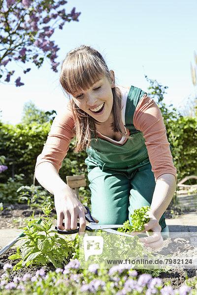 Junge Frau schneidet Blätter mit Schere  lächelnd