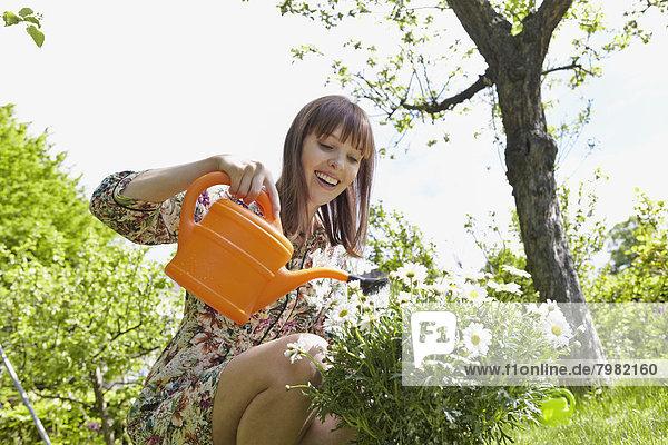 Junge Frau  die Blumen gießt  lächelnd