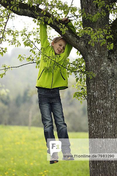 Deutschland  Baden Württemberg  Portrait eines Jungen am Baum hängend  lächelnd