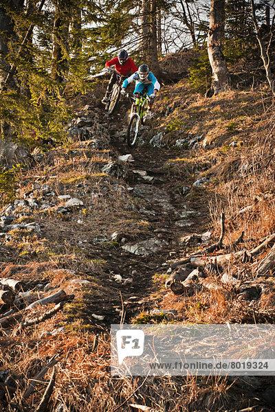 Men mountain biking through forest