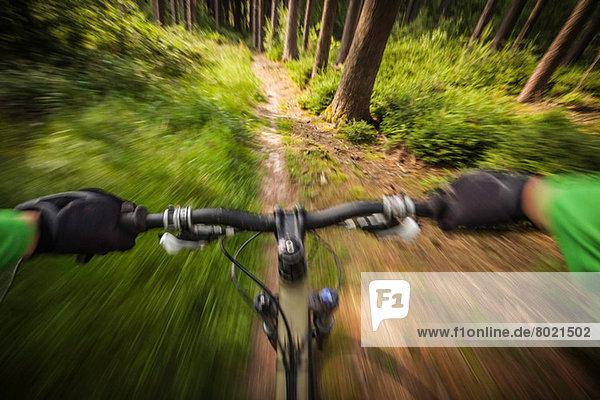 Mountainbiker rasen den Waldweg hinunter