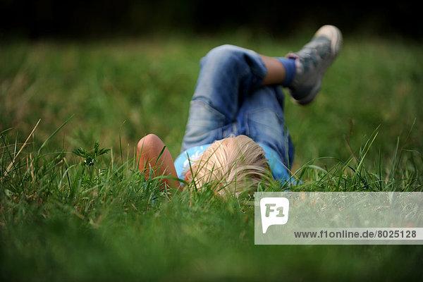 Little boy is lying in a meadow.