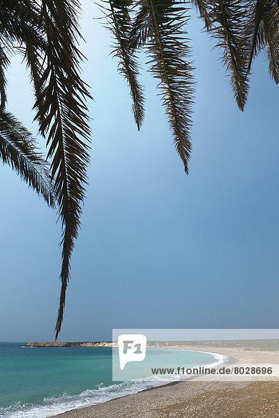Strand  Baum  Himmel  Küste  Ast  blau  Rahmen  vorwärts
