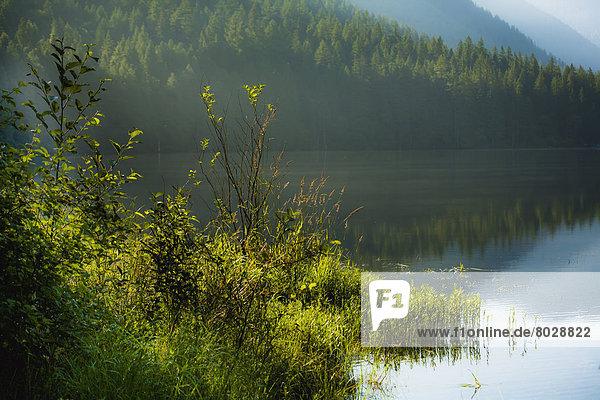 nebeneinander  neben  Seite an Seite  Ruhe  Morgen  See  früh  Ländliches Motiv  ländliche Motive