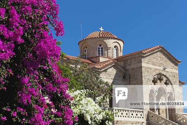Helligkeit  Blume  Gebäude  Kirche  pink  Fokus auf den Vordergrund  Fokus auf dem Vordergrund