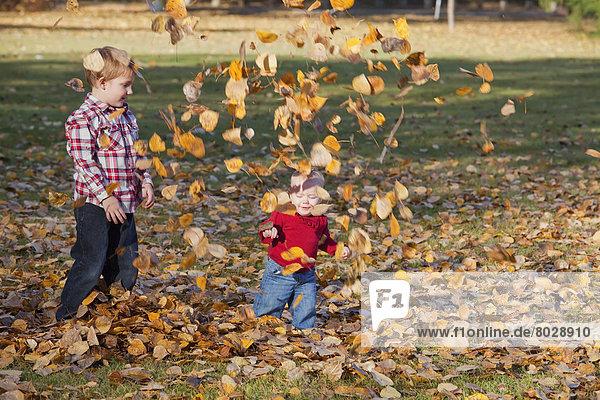 Bruder Schwester Spiel Herbst jung