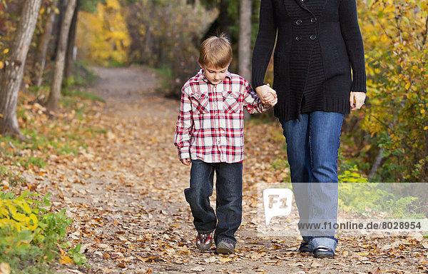 gehen  Sohn  Weg  Herbst  Mutter - Mensch