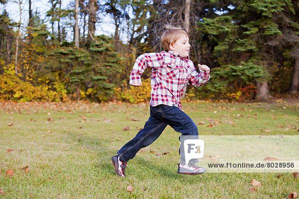 Junge - Person  rennen  Herbst  jung