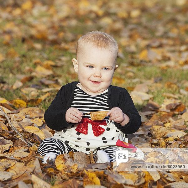 sitzend Portrait Herbst Mädchen Baby
