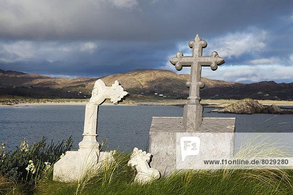 Lamm  Hintergrund  Insel  Friedhof  Abtei