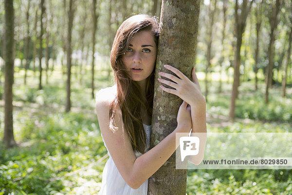 Laubwald  umarmen  Baum  Baumstamm  Stamm  Phuket  Mädchen
