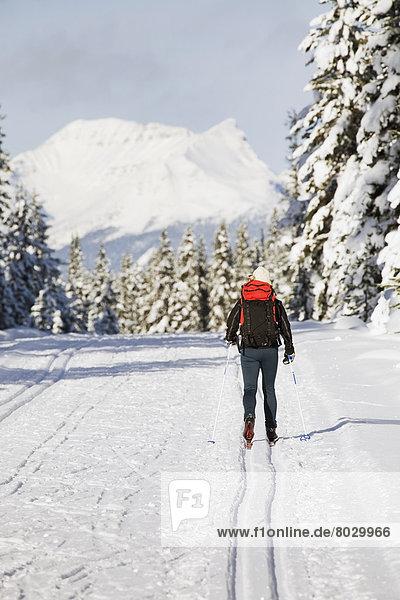 Spur  überqueren  Berg  bedecken  Baum  Himmel  Hintergrund  blau  immergrünes Gehölz  Kreuz  Schnee