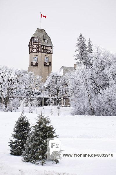 bedecken  Baum  umgeben  Frost  Assiniboine  Kanada  Manitoba  Messehalle  Winnipeg