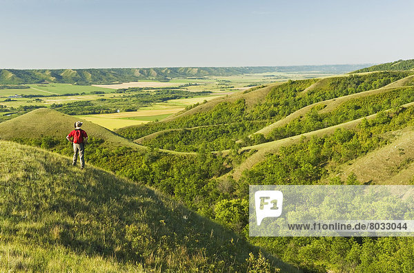 über  Hügel  Tal  Fluss  wandern  Erosion  Saskatchewan  Qu'Appelle  Saskatchewan  Kanada