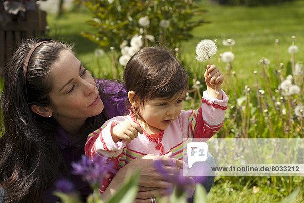 Außenaufnahme  sehen  Blume  Garten  Mutter - Mensch