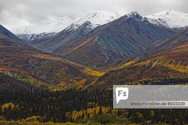 Farbaufnahme  Farbe  Berg  Heiligtum  Herbst  Bundesstraße  vorwärts  Mount Saint Elias