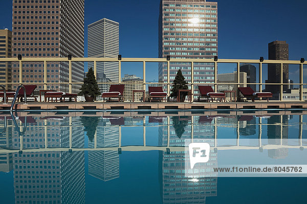 Downtown Denver skyline viewed from roof top pool of Warwick Hotel  Denver  Colorado  USA