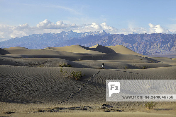 Vereinigte Staaten von Amerika  USA  Frau  Berg  gehen  Hintergrund  Sand  jung  flach  Düne  Death Valley Nationalpark  Kalifornien