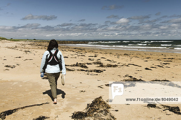 UK  Scotland  Fife  Woman walking on Kingsbarns Beach  East Neuk
