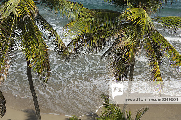Elevated view of beach at Petite Anse Hotel  Laurant Point  Saueurs  Grenada  Caribbean