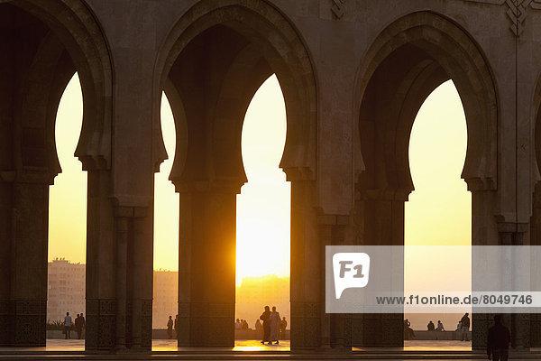 sehen  Brücke  blättern  Casablanca  Abenddämmerung  Marokko  Moschee