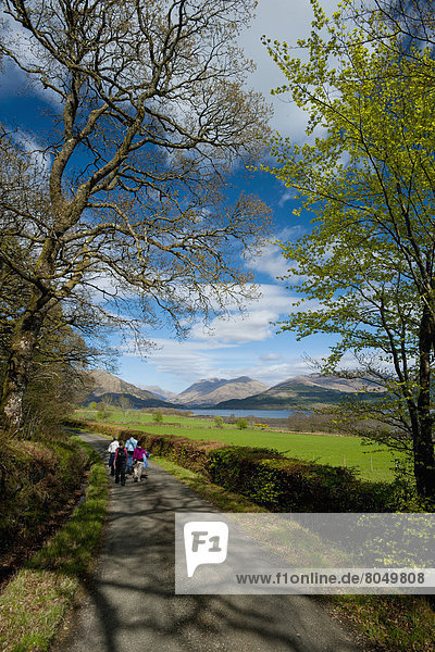 Gehhilfe  Landstraße  Großbritannien  klein  See  Argyll and Bute  Schottland