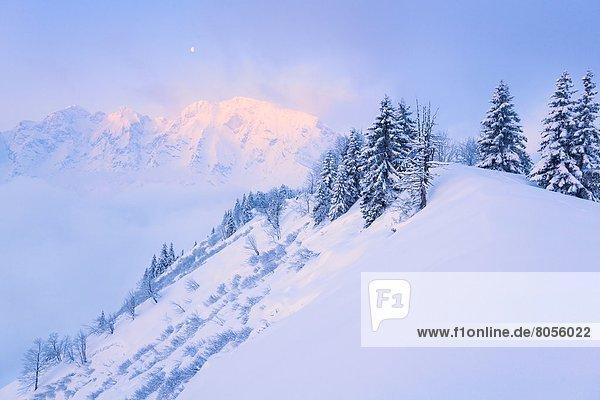 Sonnenaufgang am Hohn Göll  Berchtesgadener Alpen  Bayern  Deutschland  Europa