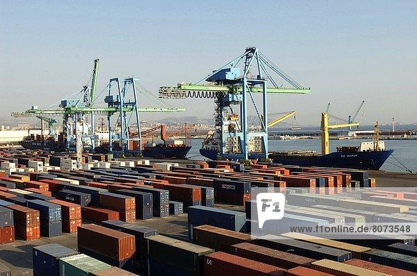Behälter Hafen Ehrfurcht Schiff Kai Fahne Transport aufbewahren Ladung Menschen im Hintergrund Hintergrundperson Hintergrundpersonen nebeneinander neben Seite an Seite Betrieb Container Zweckmäßigkeit Marseille