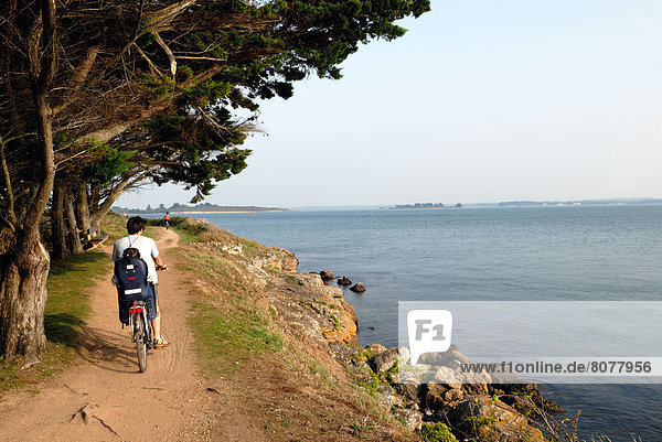 'Bicycle ride on the coastal paths of the ''ile d'Arz'' island in the Gulf of Morbihan (56) : father and his daughter in a baby bike seat'
