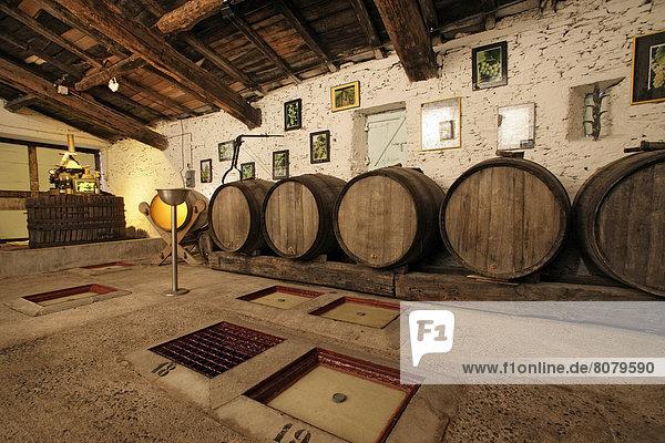 Wein  Stadt  Fluss  Verkäufer  Zimmer  Nantes  Transportpalette  Palette