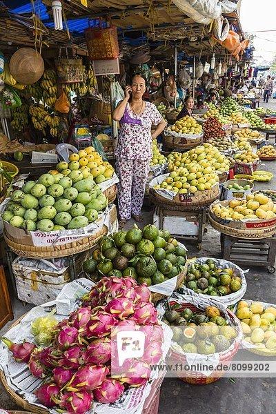 Frische  Arzt  Produktion  verkaufen  Südostasien  Vietnam  Asien  Markt