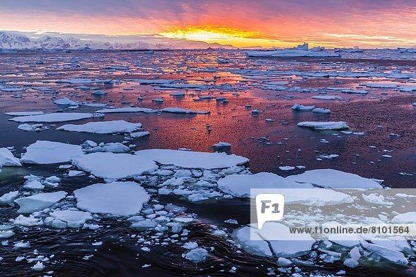Sonnenuntergang  über  Eis  Eisberg  Antarktis