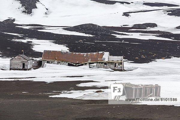 Hafen  verlassen  Unterstützung  Antarktis  Deception Island  Haltestelle  Haltepunkt  Station  Wal
