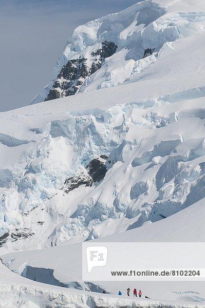 Eis  groß  großes  großer  große  großen  Regal  Insel  Antarktis