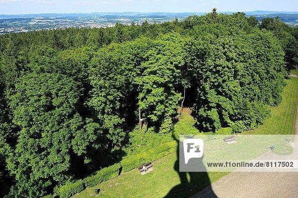 Hügel  Wald  Natur  Statue  Nordrhein-Westfalen  Hermannsdenkmal Hügel ,Wald ,Natur ,Statue ,Nordrhein-Westfalen ,Hermannsdenkmal
