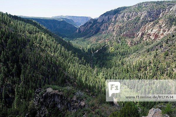 Berg  Arizona  Hochebene  Sedona