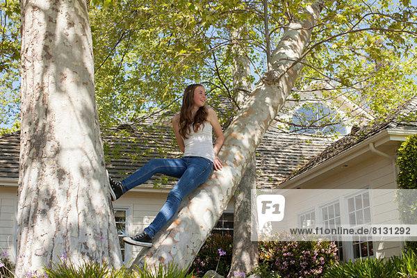 Teenager-Mädchen im Baum sitzend