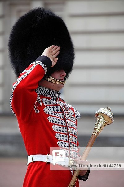 Tradition  Wandel  Großbritannien  London  Hauptstadt  Soldat  Palast  Schloß  Schlösser  Wachmann