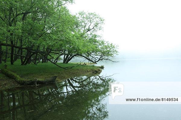 Lakeside with fog  Tochigi Prefecture
