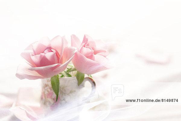 Tasse  pink  Rose