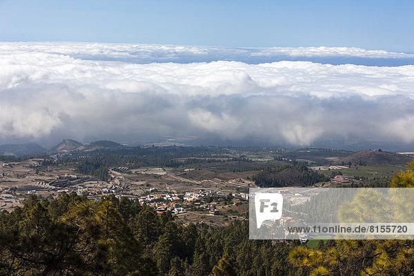 Spanien  Blick auf den Corona Forestal Nationalpark