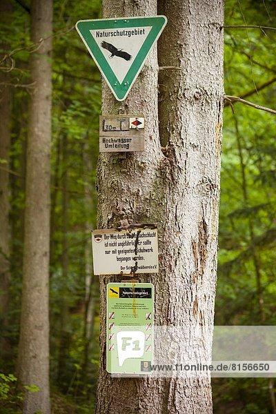 Monbachtal  Schwarzwald  Baden-Württemberg  Deutschland  Europa